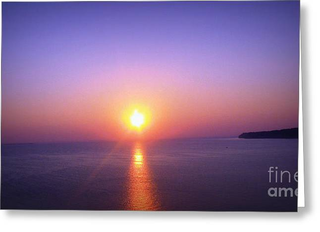 Greeting Card featuring the photograph Good Morning Starshine by Nancy Dole McGuigan