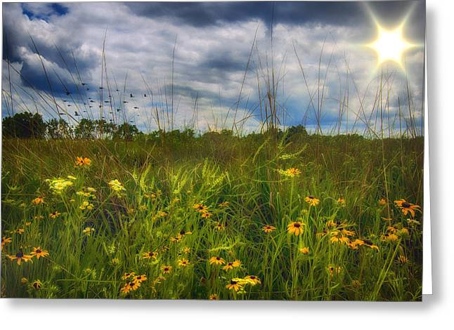 Good Morning Sunshine Greeting Card by Bill Tiepelman
