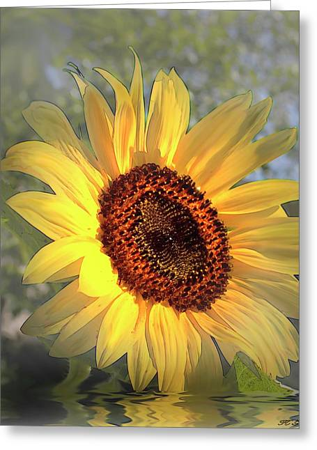 Good Morning Sunshine Digital Painting Greeting Card by Heinz G Mielke