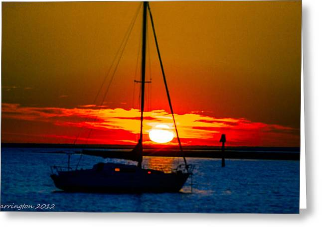 Greeting Card featuring the photograph Good Night by Shannon Harrington
