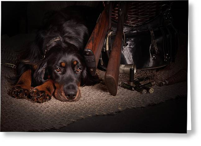 Gordon Setter With Two Guns... Greeting Card