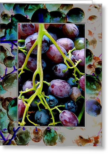 Gorgeous Bunch Of Grapes Greeting Card by John Maloof