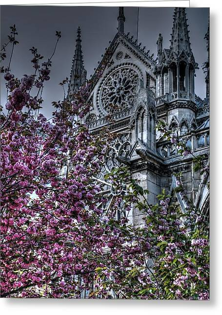 Gothic Paris Greeting Card by Jennifer Ancker