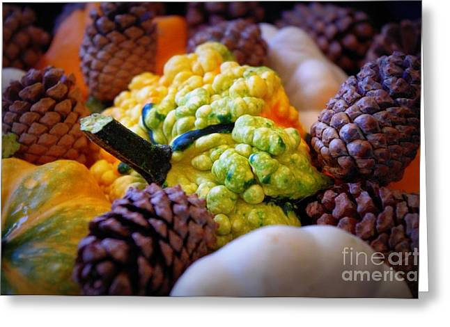 Greeting Card featuring the photograph Gourds 2 by Deniece Platt