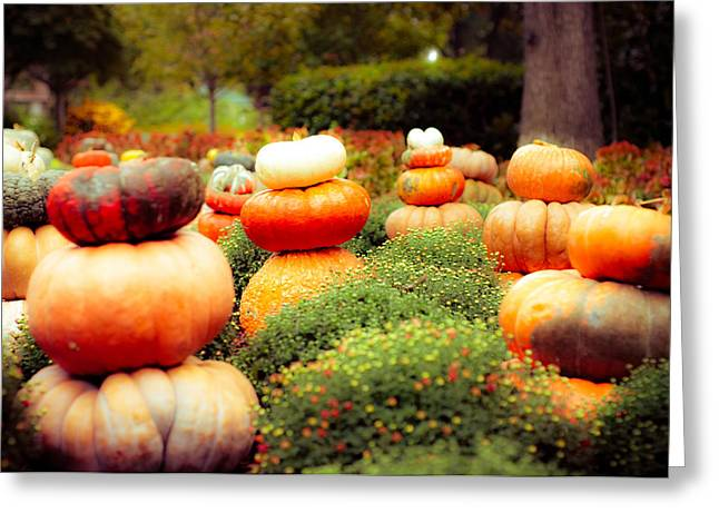 Gourds And Flowers Greeting Card by Sonja Quintero