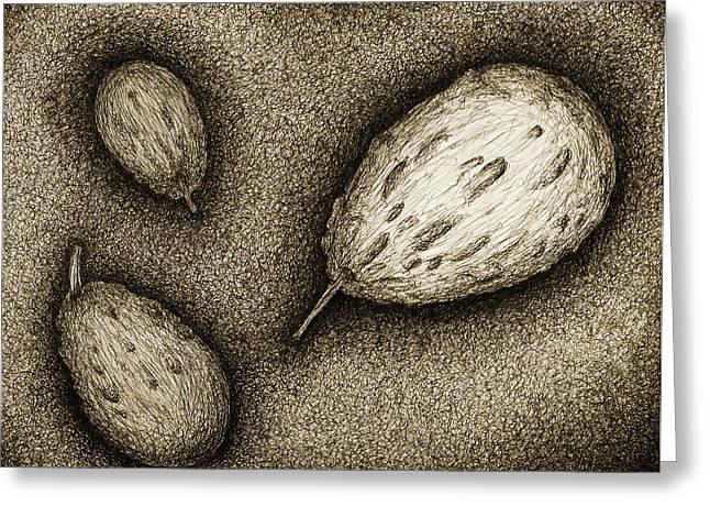 Gourds- Black Greeting Card