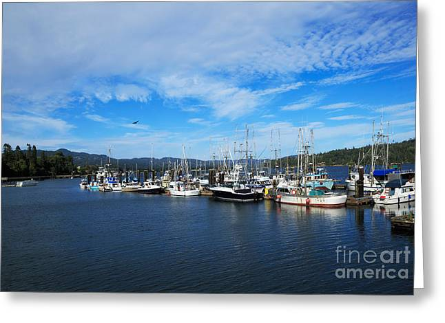 Government Wharf In Sooke Harbour Greeting Card by Louise Heusinkveld