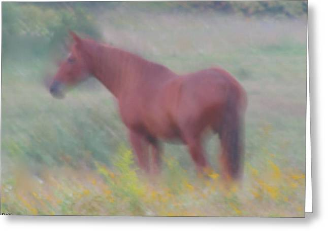 Grace In The Meadow Greeting Card