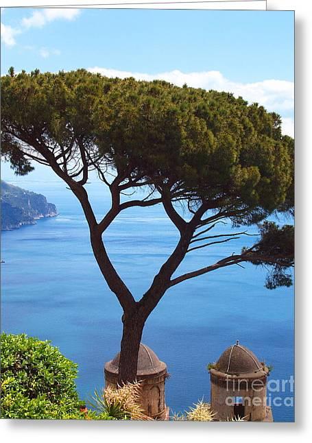 Gracious Tree Greeting Card by Joyce Hutchinson