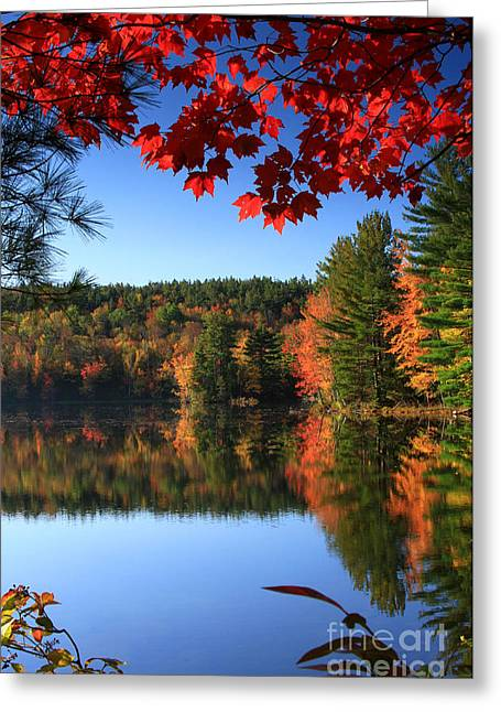 Grafton Pond Greeting Card