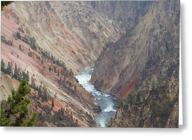 Grand Canyon At Yellowstone Greeting Card