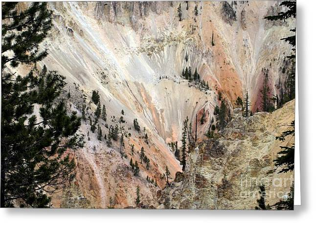 Grand Canyon Colors Of Yellowstone Greeting Card by Living Color Photography Lorraine Lynch