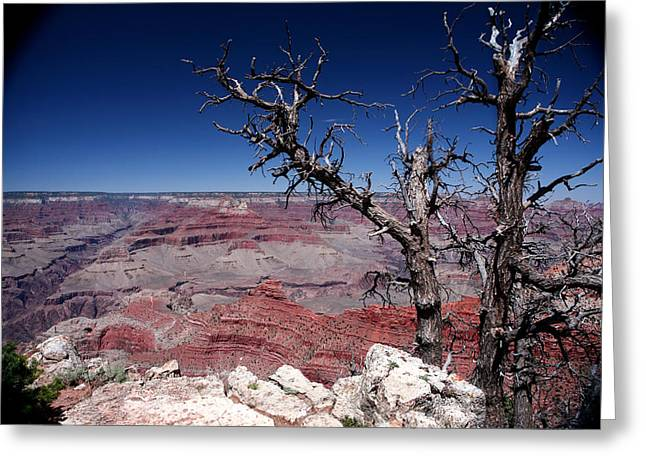 Greeting Card featuring the photograph Grand Canyon Number One by Lon Casler Bixby