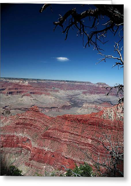 Greeting Card featuring the photograph Grand Canyon Number Three by Lon Casler Bixby