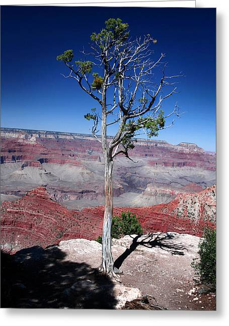 Greeting Card featuring the photograph Grand Canyon Number Two by Lon Casler Bixby