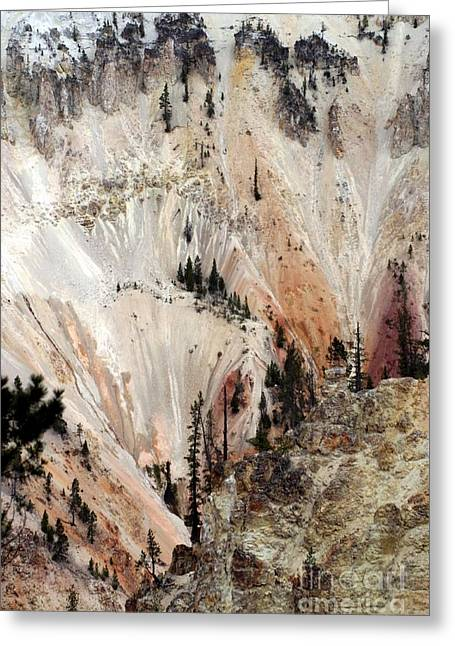 Grand Canyon Of Yellowstone Vertical Greeting Card by Living Color Photography Lorraine Lynch