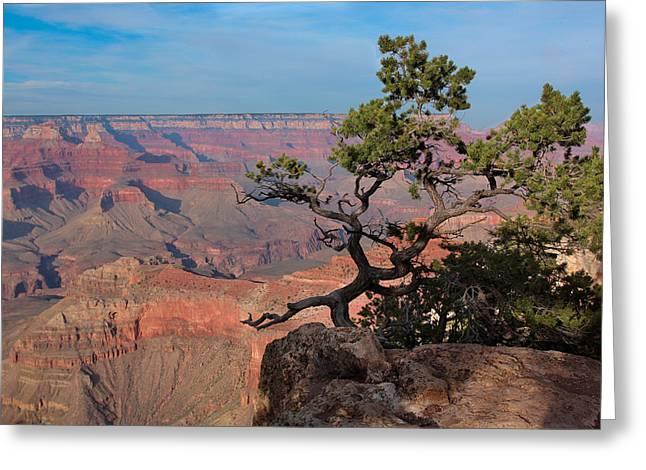 Grand Canyon Greeting Card by Olga Vlasenko