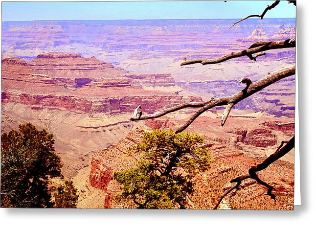 Greeting Card featuring the photograph Grand Canyon by Rima Biswas