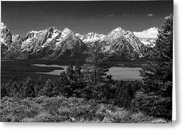 Greeting Card featuring the photograph Grand Tetons by Dan Wells