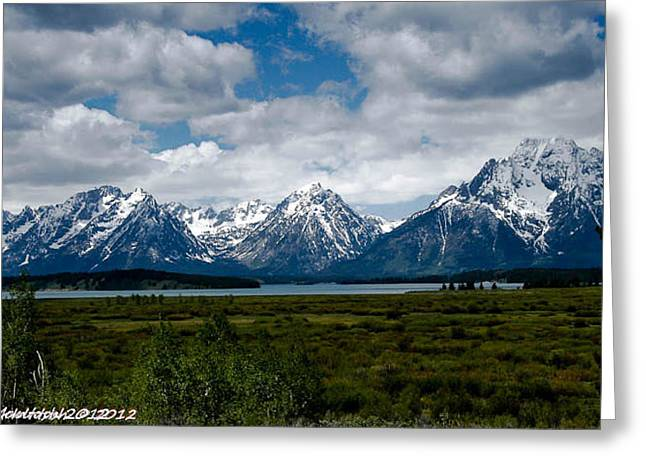Grand Tetons Greeting Card by Lauren MacIntosh