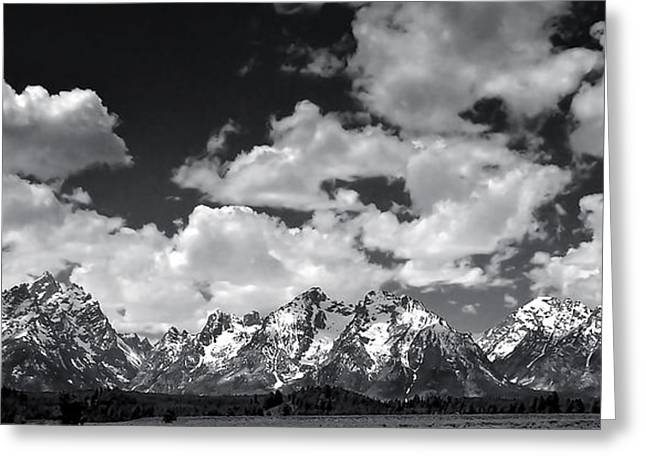 Grand Tetons Panorama In Monochrome Greeting Card