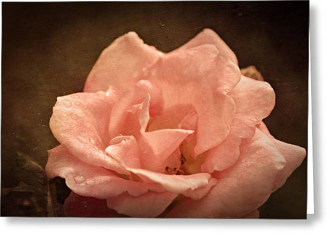 Grandmas Bloom Greeting Card by Terrie Taylor