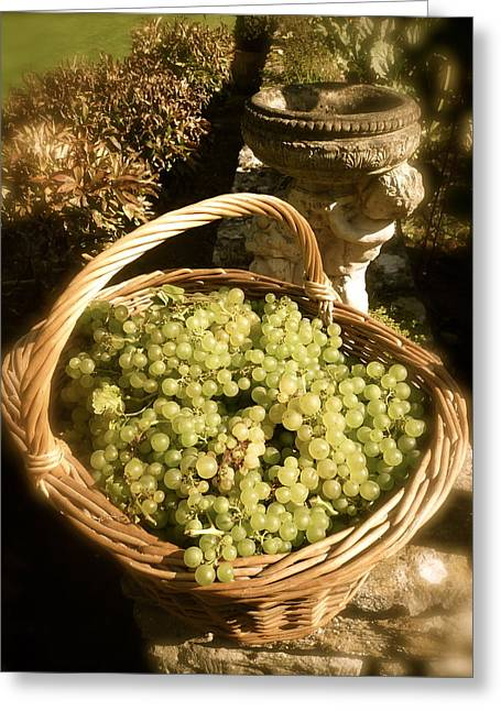 Grape Harvest Greeting Card by John Colley