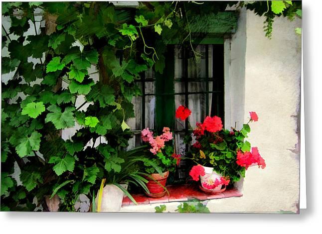 Grape Vines An Geraniums Frame A Window Greeting Card