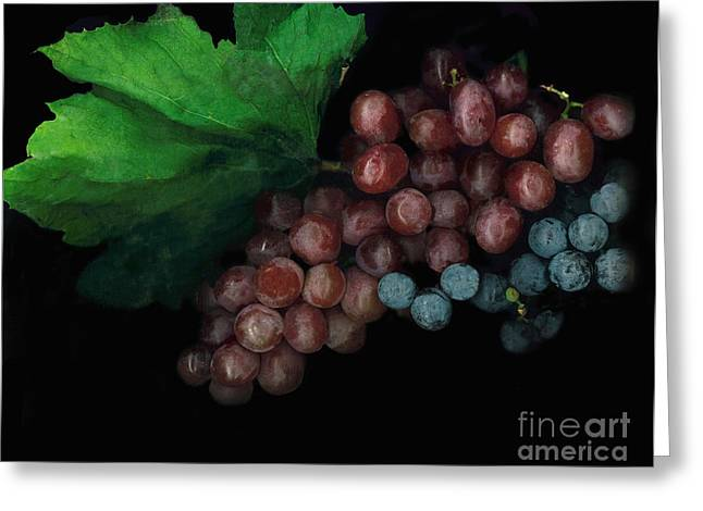 Grapes In Black Greeting Card by Casey DiDonato