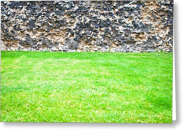 Grass And Stone Wall Greeting Card by Tom Gowanlock