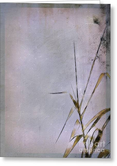 Grass And Wall Greeting Card by Judi Bagwell