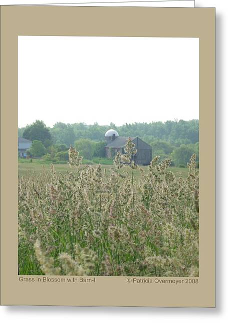 Greeting Card featuring the photograph Grass In Blossom With Barn-i by Patricia Overmoyer