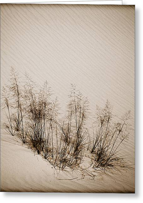 White Sands, New Mexico - Grasses Greeting Card