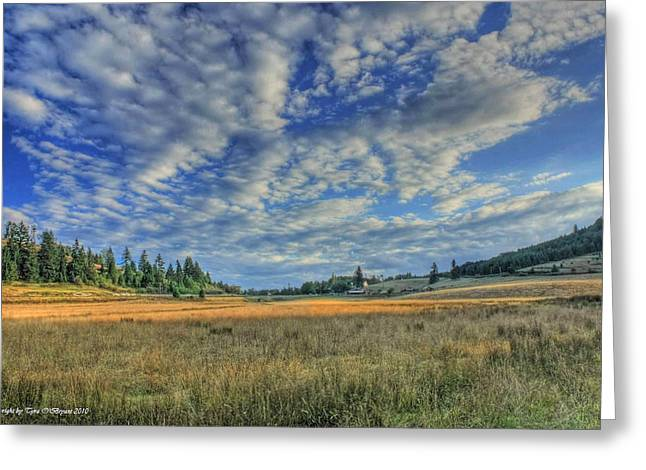 Greeting Card featuring the photograph Grassy Field by Tyra  OBryant