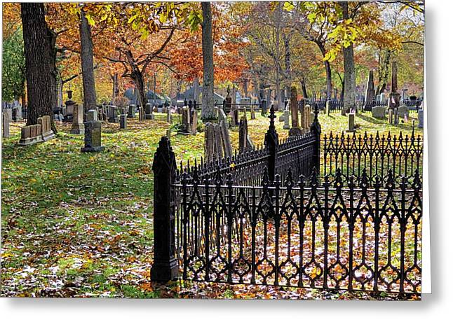 Gravestones Greeting Card by Janice Drew