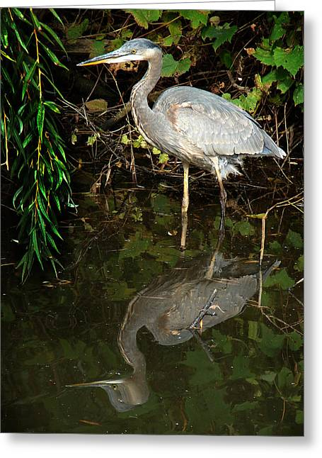 Greeting Card featuring the mixed media Great Blue Heron 1 by Bruce Ritchie