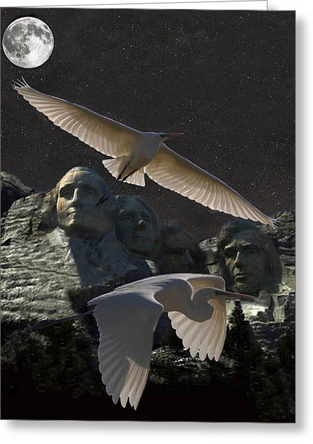 Great Egrets Mount Rushmore  Greeting Card by Eric Kempson