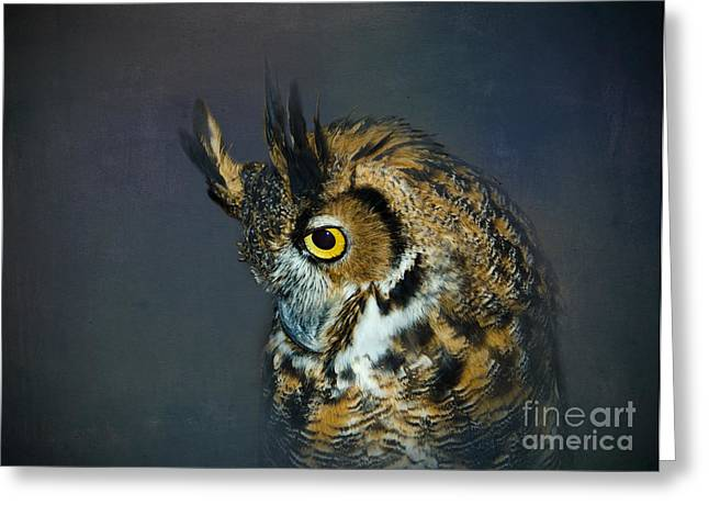 Great Horned Owl Greeting Card by Betty LaRue