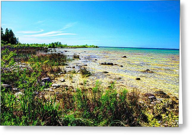 Greeting Card featuring the photograph Great Lakes Summer Shoreline by Janice Adomeit