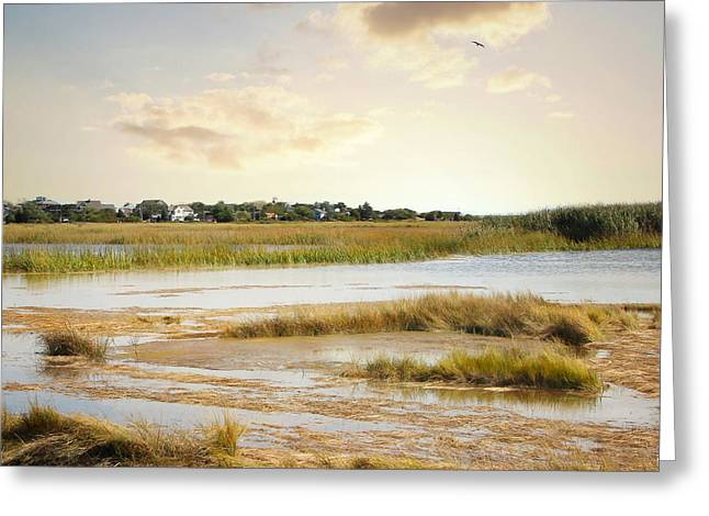 Greeting Card featuring the photograph Great Marsh Ll by Karen Lynch