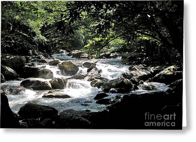 Great Stream Great Smokeys Greeting Card by Don F  Bradford