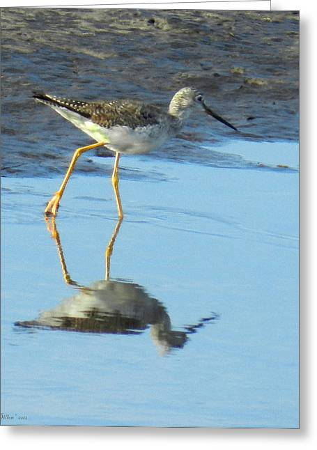 Greater Yellow Legs Greeting Card