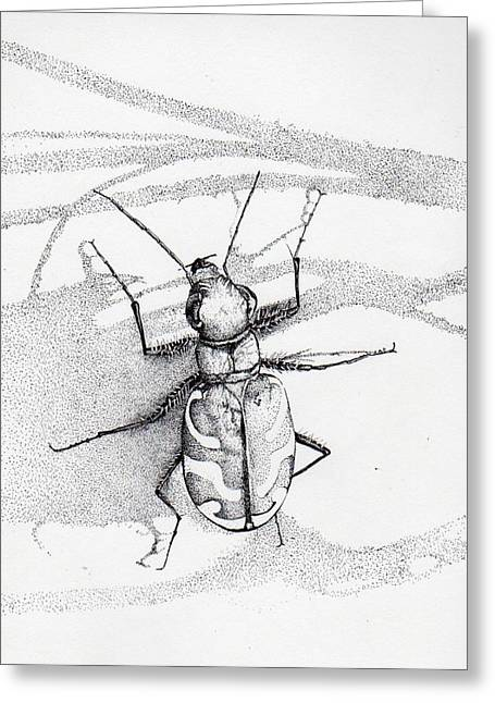 Green Andyellow Beetle Greeting Card