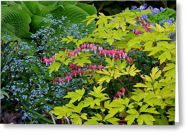Greeting Card featuring the photograph Green Bay Botanical Gardens by Judy  Johnson