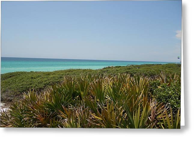 Green Beach Greeting Card by Craig Keller