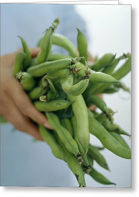 Green Beans Greeting Card by David Munns