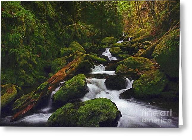 Green Canyon Cascades Greeting Card by Diane Kurtz