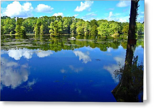Green Field Lake Greeting Card