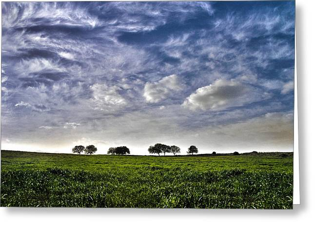 Green Fields And Blue Sky Greeting Card