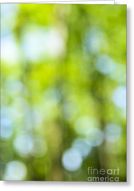 Green Forest And Blue Sky Greeting Card